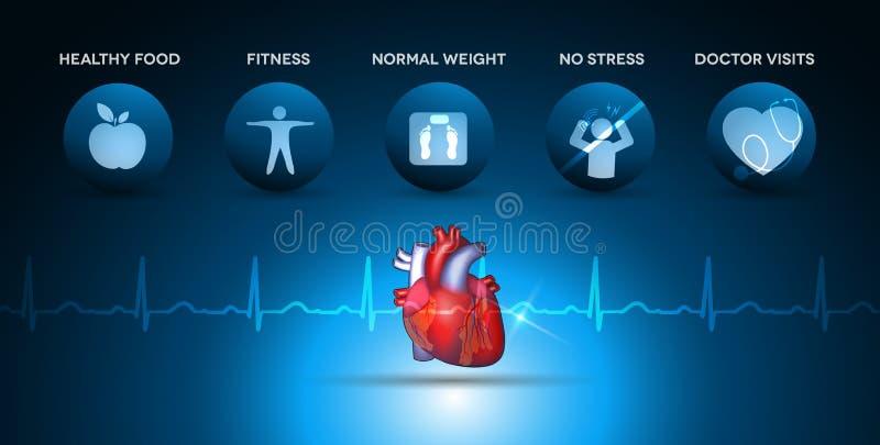 Kardiologihälsovårdsymboler och hjärtaanatomi royaltyfri illustrationer