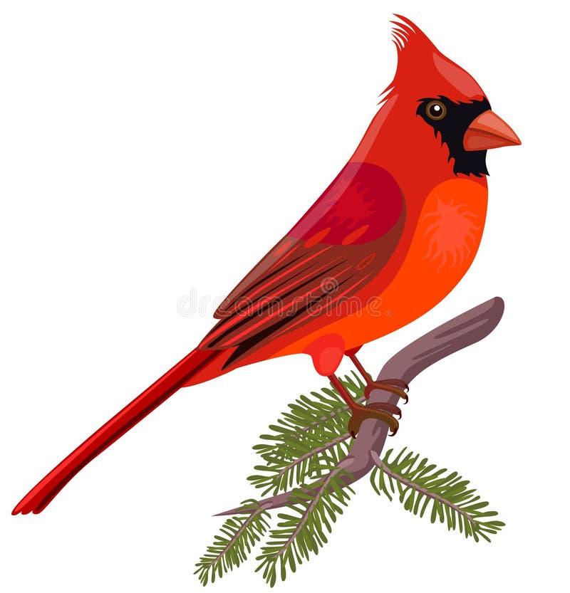kardynał royalty ilustracja