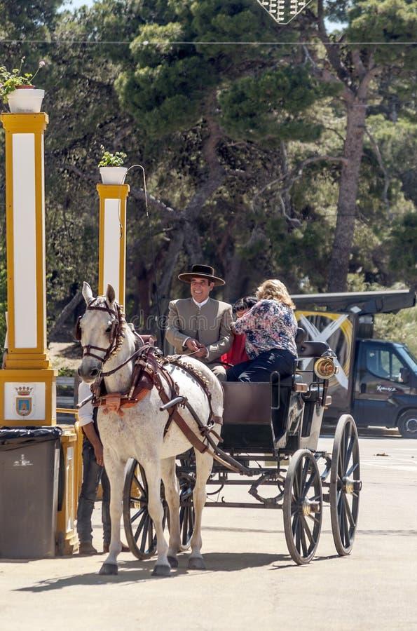 Kareciani konie przy jarmarkiem obraz stock