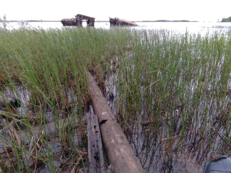 Karelia - övergav fartygskjul arkivbilder