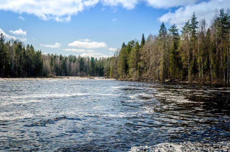 Karelia flod royaltyfria bilder
