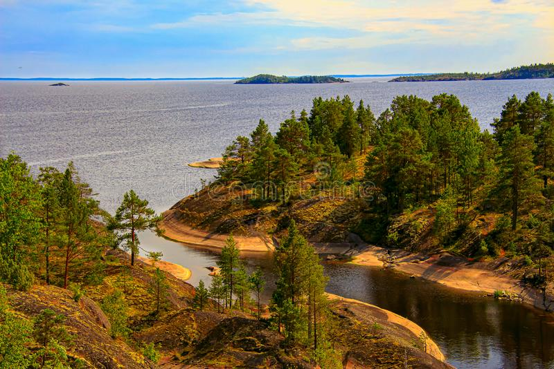 Karelia: forest on the rocks by the lake. Under a cloudy sky royalty free stock photo