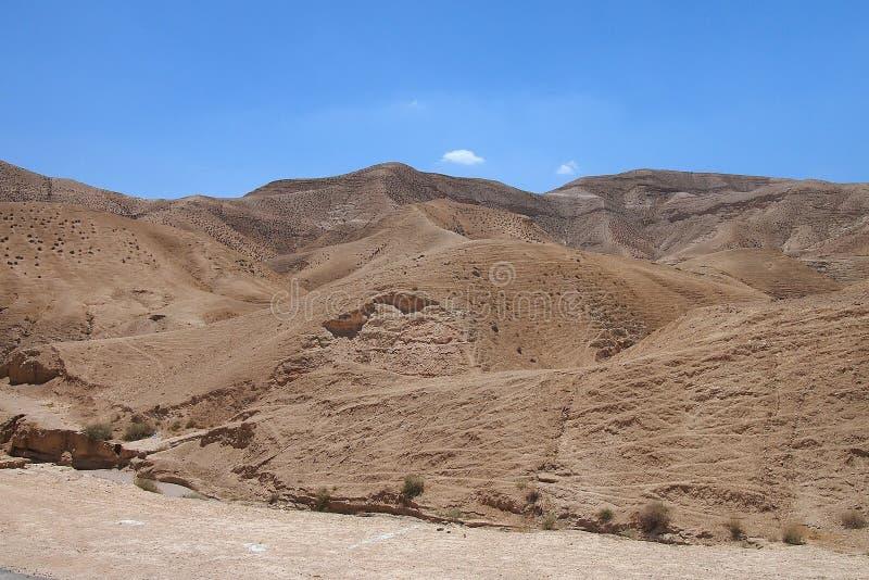 Karg Judaean öken, Israel, heliga länder royaltyfri foto