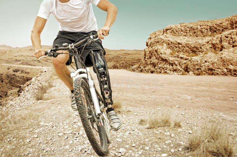 Kargt landskap för handikappad mountainbikeryttare arkivfoton