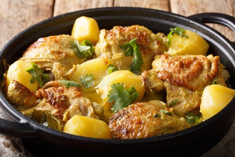 Kari Ayam etwas w?rzig, Kokosnuss und Trost der malaysischen Curryh?hnernahaufnahme auf einer Wanne horizontal lizenzfreie stockfotografie