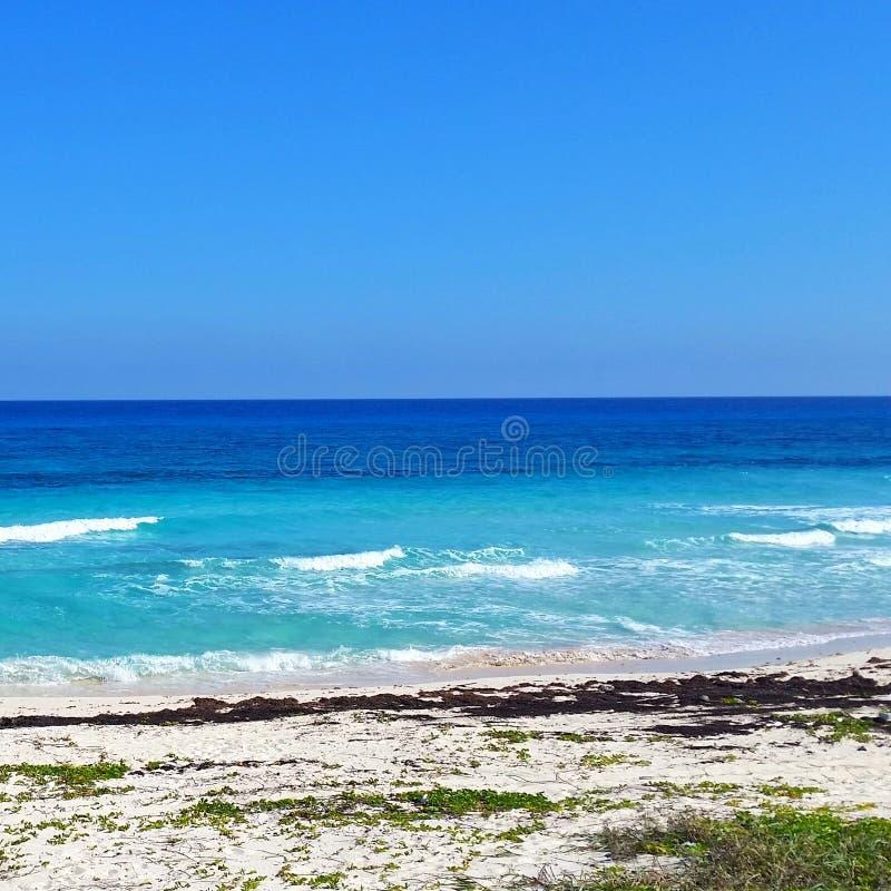 Karibische Meere in Playa del Carmen lizenzfreies stockfoto