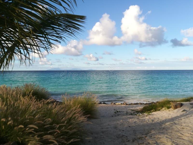 Karibischer Strand stockbild