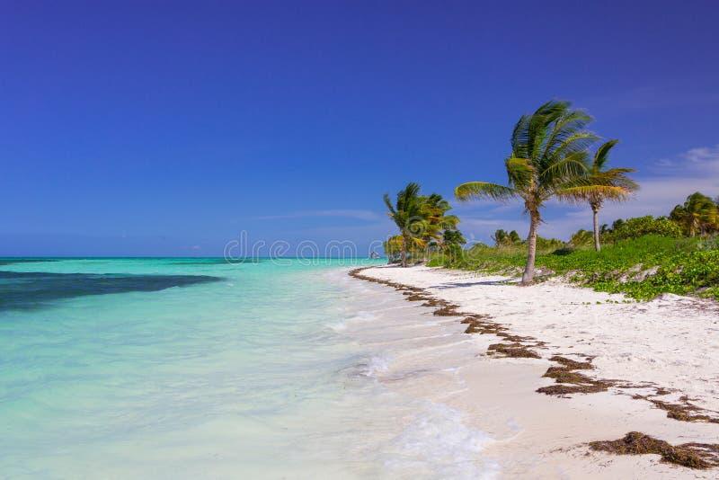 Karibischer Strand in Kuba lizenzfreies stockbild