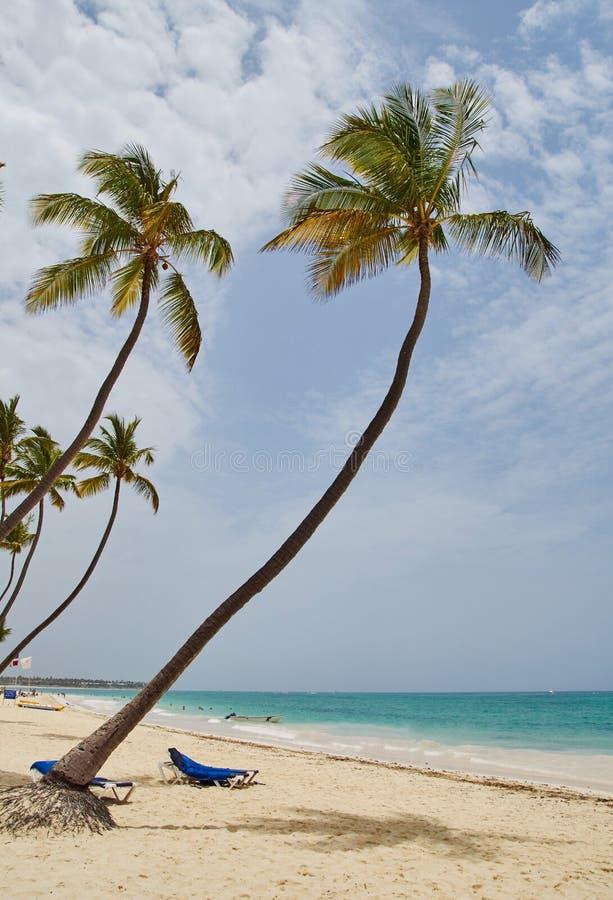 Karibisches Gefühl in punta cana lizenzfreie stockfotos
