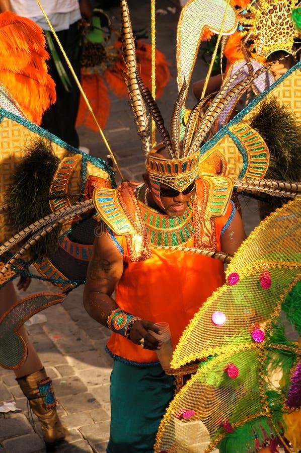 karibisk carnivale 11 arkivfoto