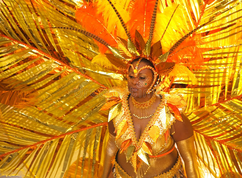 karibisk carnivale 9 royaltyfri bild