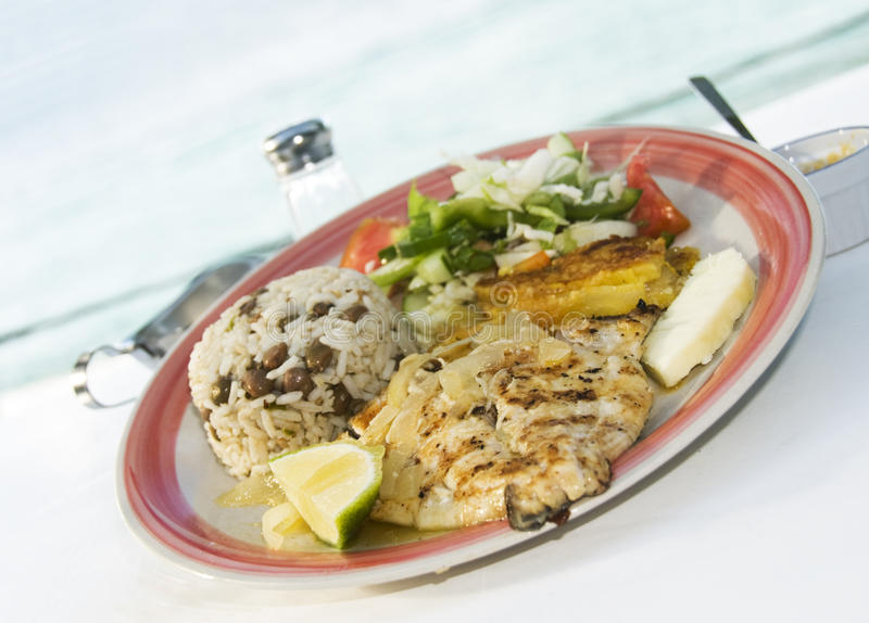 karibisk cavalli grillad sauteed stil för kingfish arkivfoto