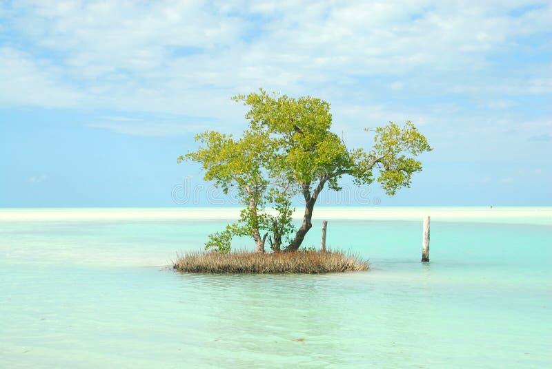 Karibisk liten ö för Holbox ö arkivbilder