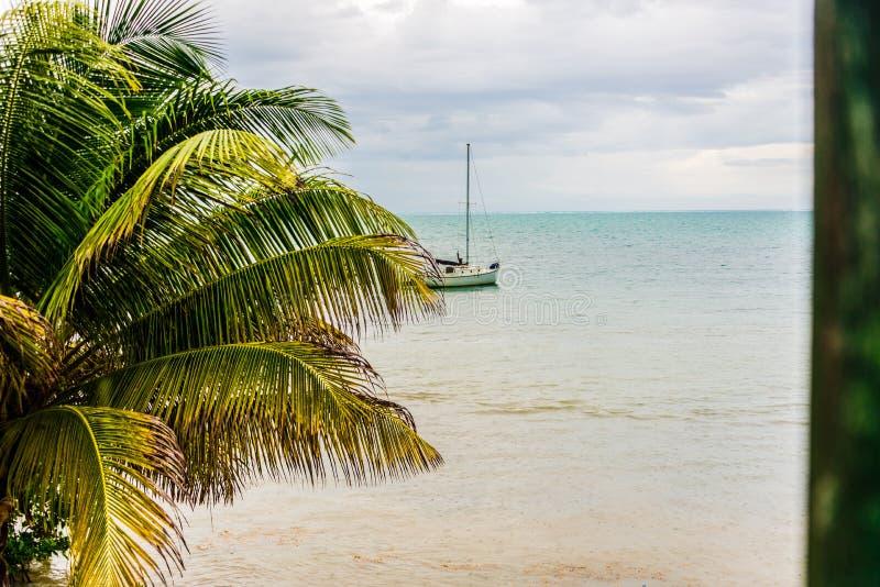 Karibisk plats som seglar den Caye Caulkerön, Belize royaltyfria foton