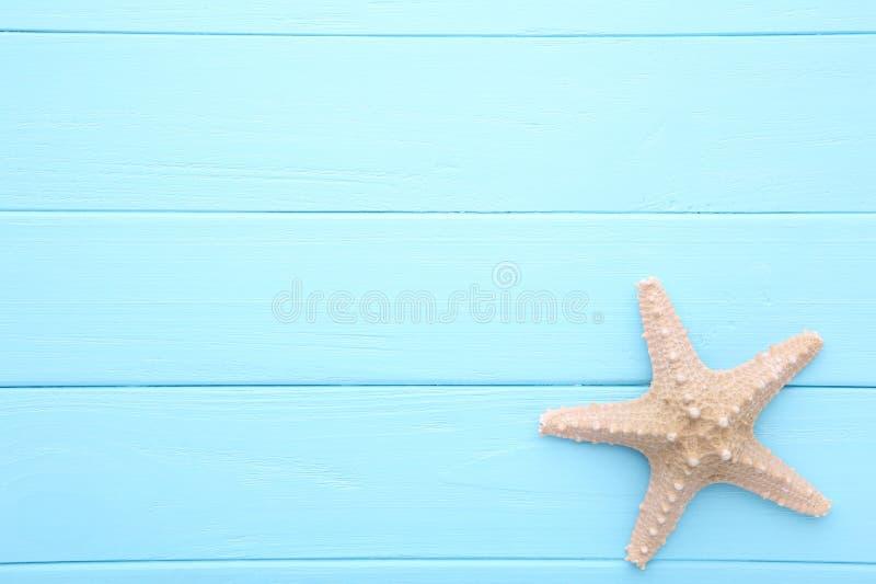 Karibisk sjöstjärna på en blå träbakgrund Top besk?dar royaltyfria foton