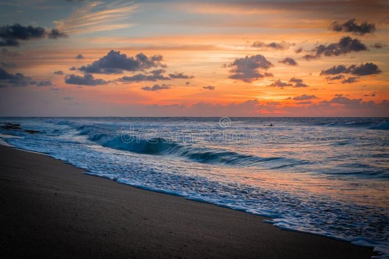 Karibisk solnedgång och en surfare royaltyfria bilder