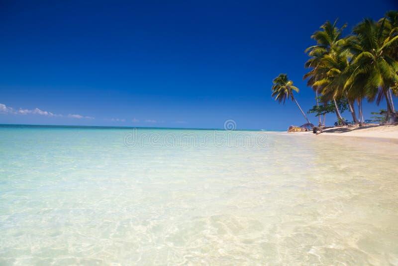 karibisk strand royaltyfria bilder