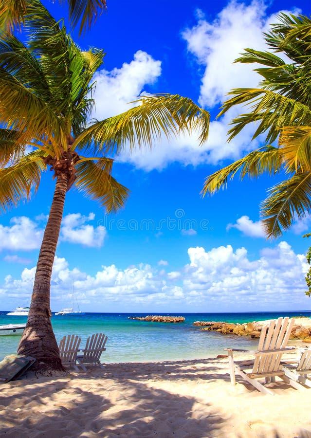 Karibisk strand i Dominikanska republiken royaltyfri foto