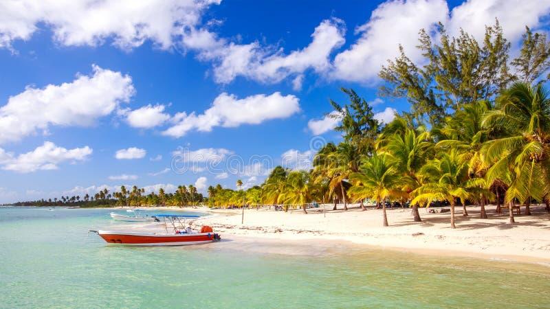 Karibisk strand i Dominikanska republiken royaltyfria bilder