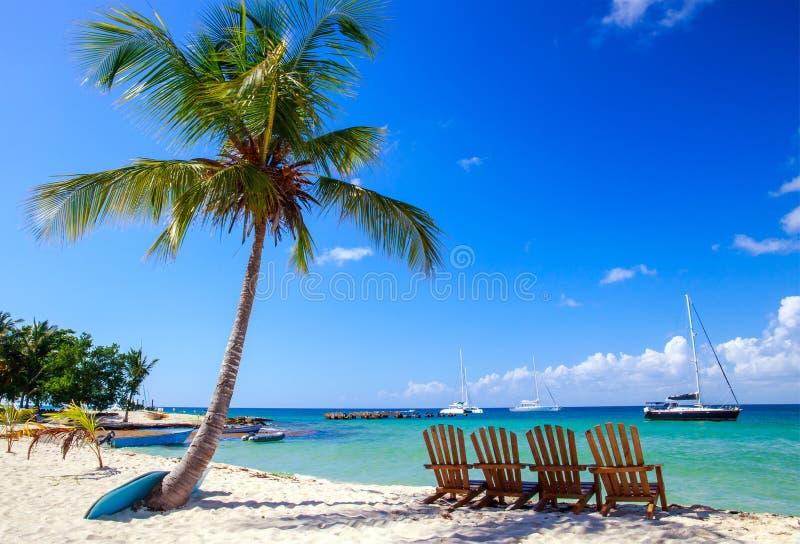 Karibisk strand i Dominikanska republiken royaltyfri bild