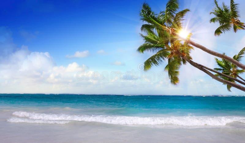 Karibisk strand och sol som skiner royaltyfri fotografi