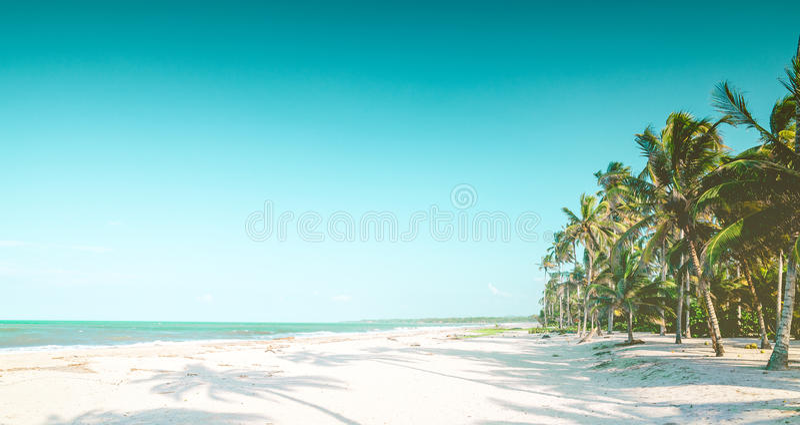 Karibisk tropisk strand vid palominoen i Colombia arkivbild