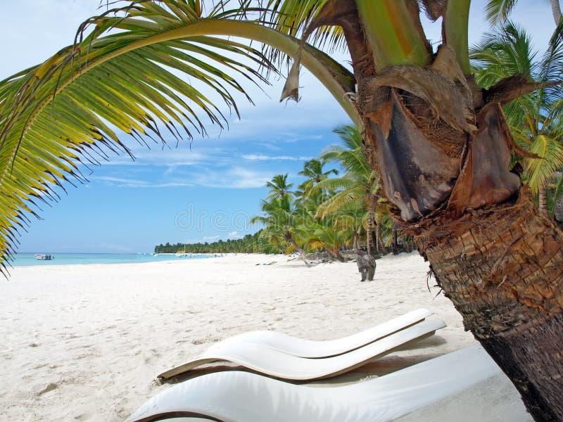 karibiskt dominikanskt hav för örepubliksaona arkivbild