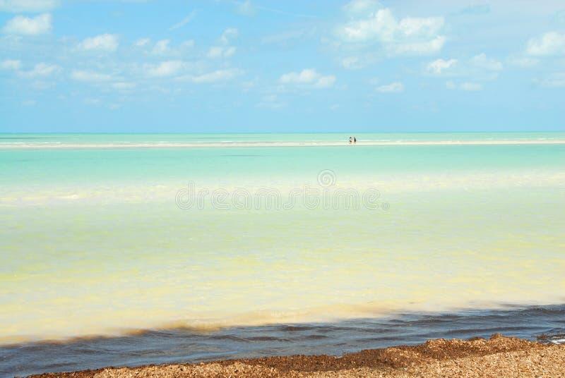 Karibiskt hav för Holbox ö arkivfoto