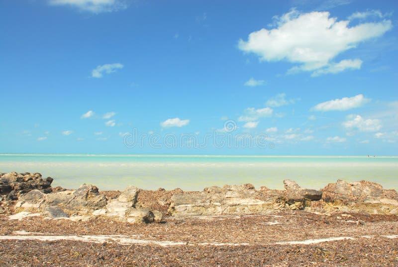 Karibiskt landskap för Holbox ö royaltyfria bilder