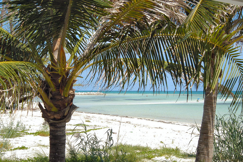 karibiskt paradis fotografering för bildbyråer