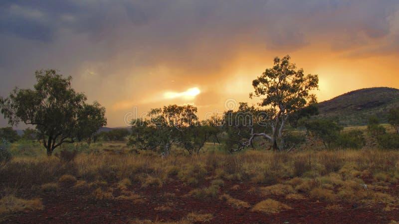 Karijini nationalpark, västra Australien royaltyfria bilder