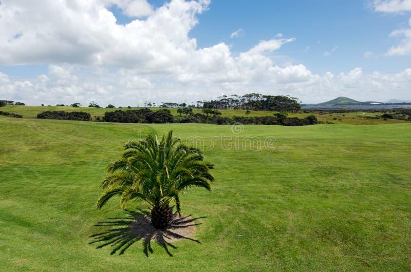 Karikari peninsula northland New Zealand. Landscape view of Karikari peninsula in northland, New Zealand stock images
