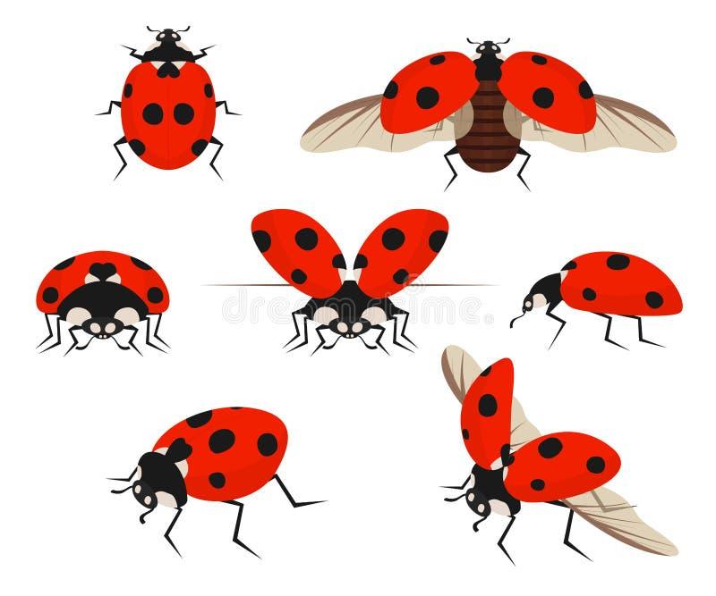 Karikatur-Farbdame Bug Icon Set Vektor lizenzfreie abbildung