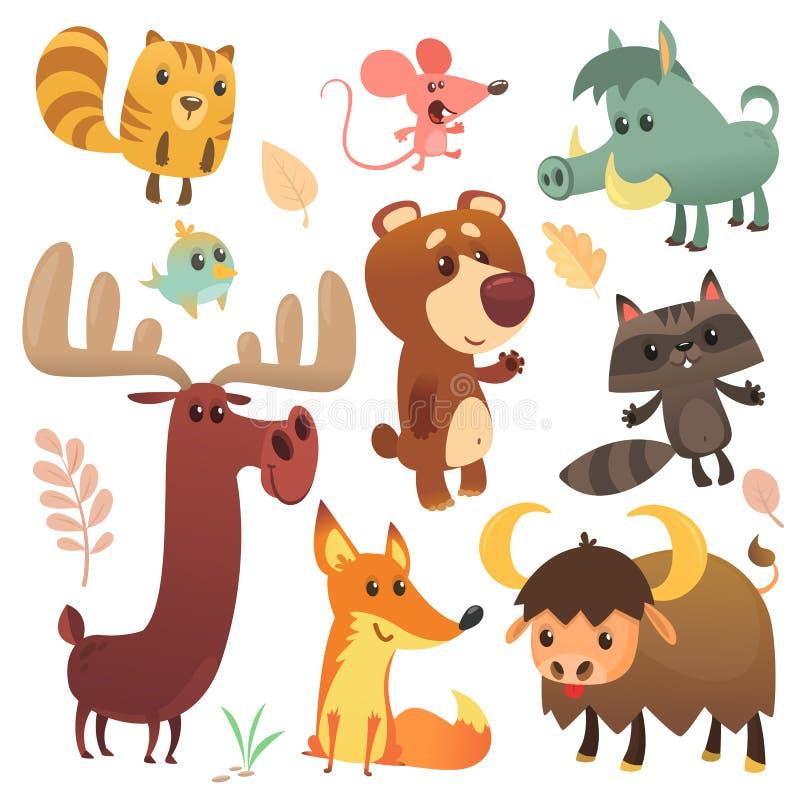 Karikatur Forest Animals Set Auch im corel abgehobenen Betrag Eichhörnchenmäusewaschbäreberfuchsbüffelbärn-Elchvogel lizenzfreie abbildung