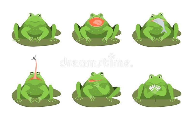 Karikatur-netter grüne Frosch-Charakter-Ikonen-Satz Vektor stock abbildung