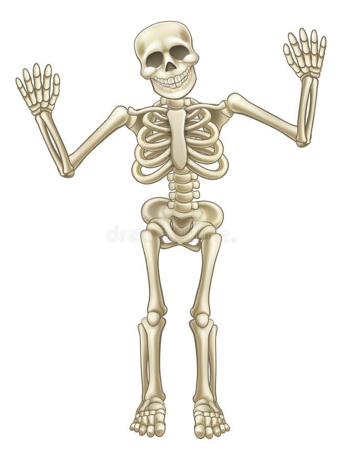 Karikatur-Skelett-Charakter Vektor Abbildung - Illustration von ...
