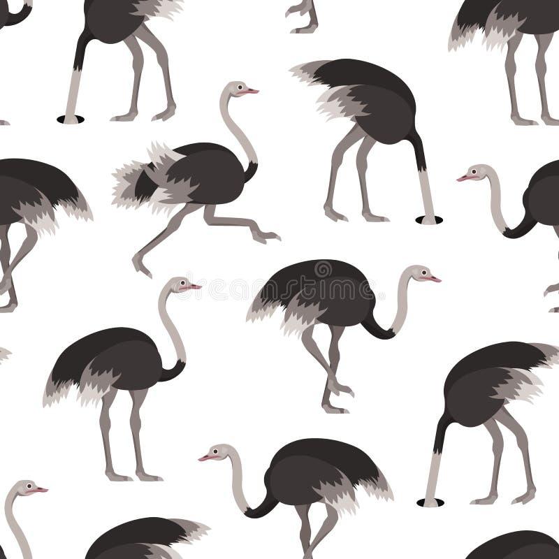 Karikatur-Strauß-Vogel-nahtloser Muster-Hintergrund Vektor lizenzfreie abbildung