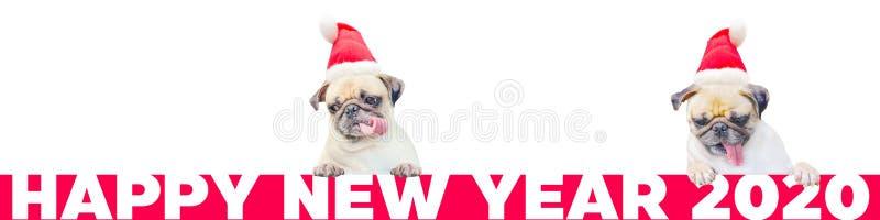 Karikatur zwei wenig Pug-Hund in einem roten Weihnachtshut mit Nr. 2020 Nettes Karikaturweihnachtstierhund Weihnachten und neues  stockfotos