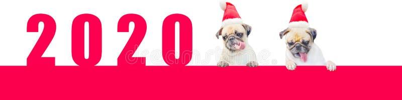 Karikatur zwei wenig Pug-Hund in einem roten Weihnachtshut mit Nr. 2020 Nettes Karikaturweihnachtstierhund Weihnachten und neues  lizenzfreie stockfotos