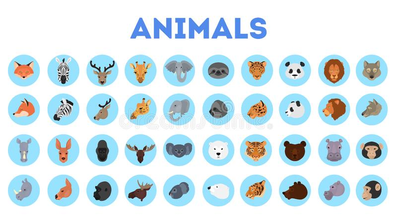 Karikaturb?r, -kaninchen, -katze, -hund, -panda und -l?we Sammlung des wilden Tiergesichtes stock abbildung