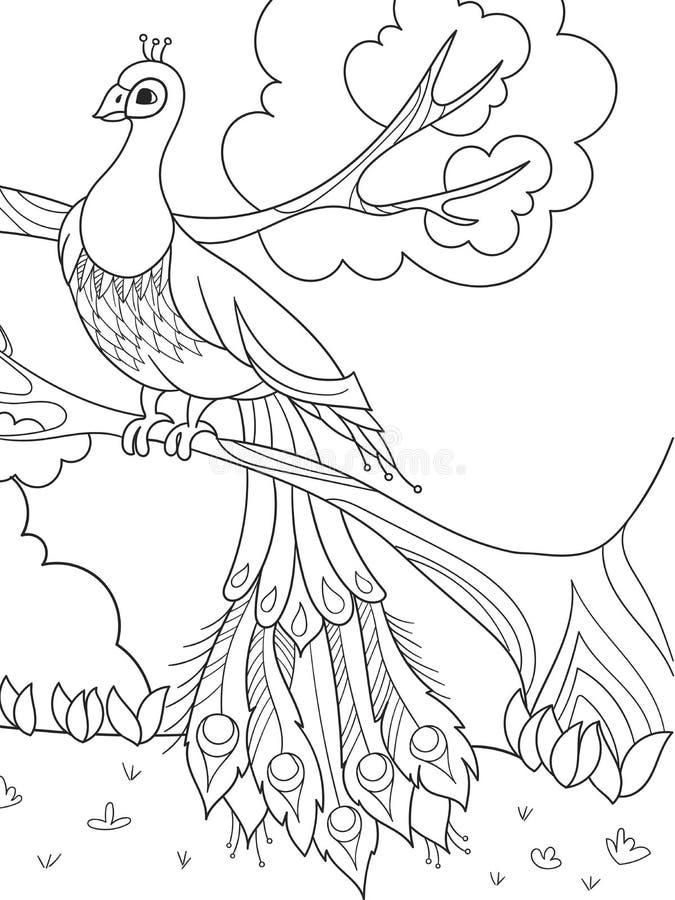 Karikaturfarbton für Kinder Ein Vogel, eine Feder eines Vogels oder ein Pfau auf einem Baum lizenzfreie abbildung
