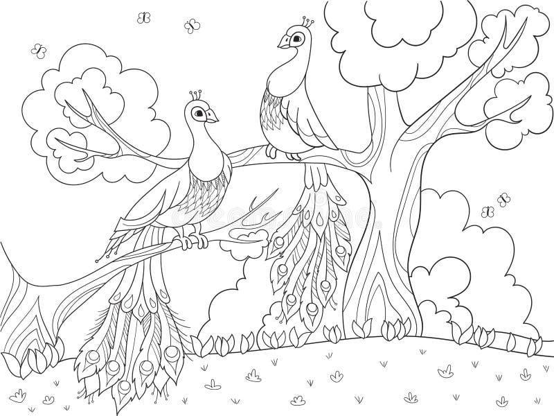 Karikaturfarbton für Kinder Ein Vogel, eine Feder eines Vogels oder ein Pfau auf einem Baum Paare in der Liebe lizenzfreie abbildung