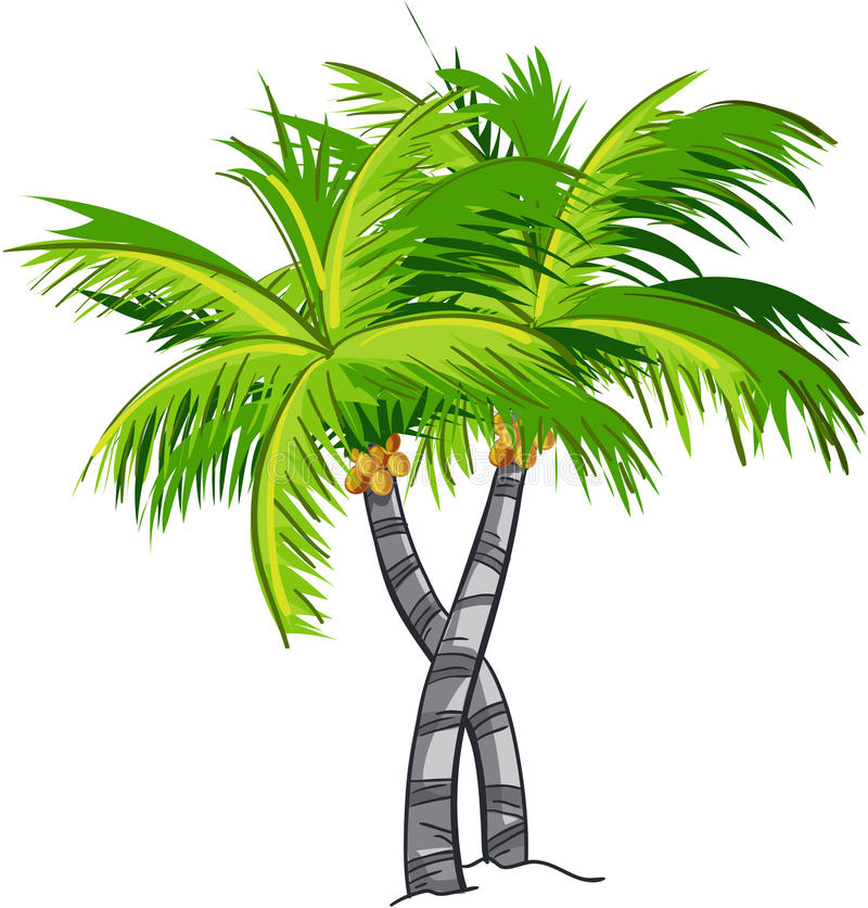 Karikaturkokosnussbaum vektor abbildung