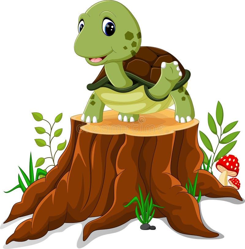Karikaturschildkrötenaufstellung