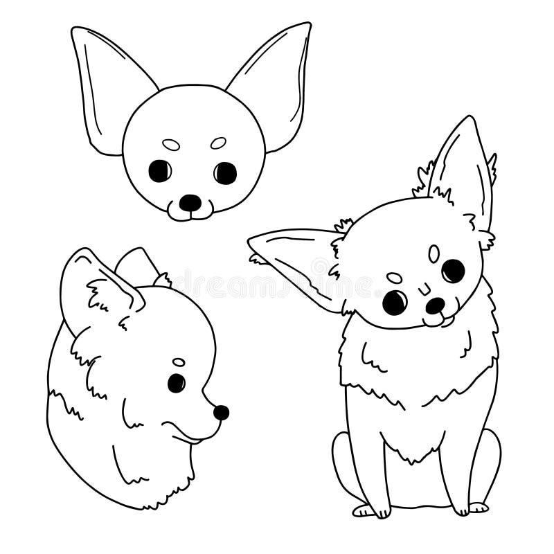 Karikaturskizzen von Chihuahua eigenhändig gezeichnet Vektorillustration auf weißem Hintergrund in der einfachen Art vektor abbildung