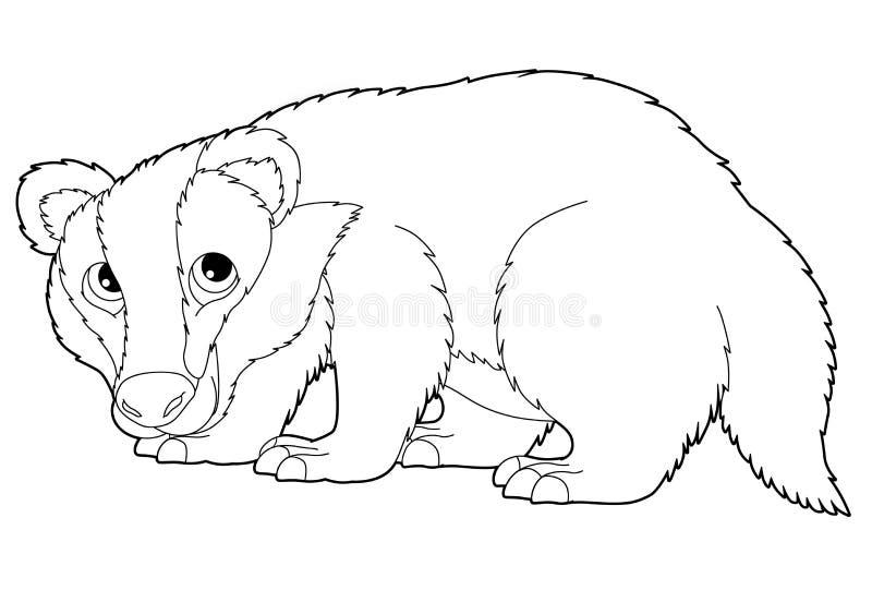 Karikaturtier - Dachs - Farbtonseite vektor abbildung
