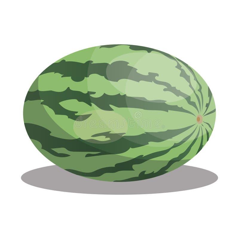 Karikaturwassermelone Geschnittene süße Wassermelone Stücke saftige Frucht Sommervitaminfrucht Abbildung für Kinder vektor abbildung