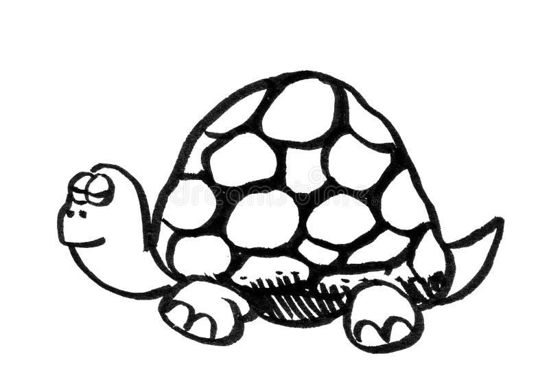 Karikaturzeichnung einer Schildkröte stock abbildung