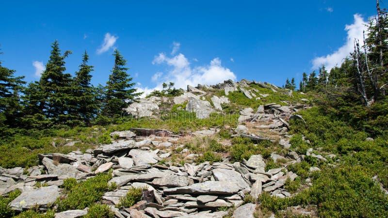 Karkonosze Mountain View stockfotografie