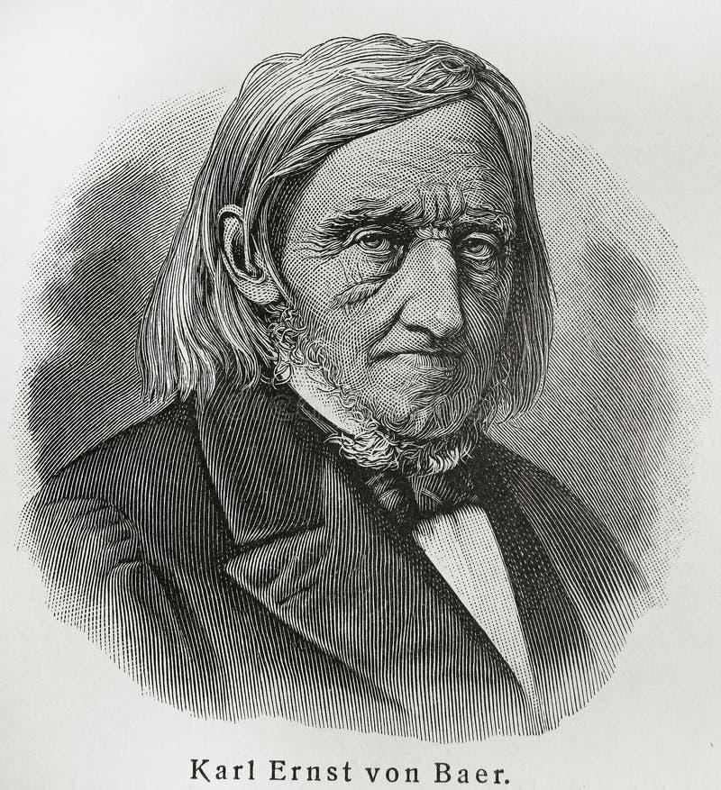 Karl Ernst von Baer photo stock